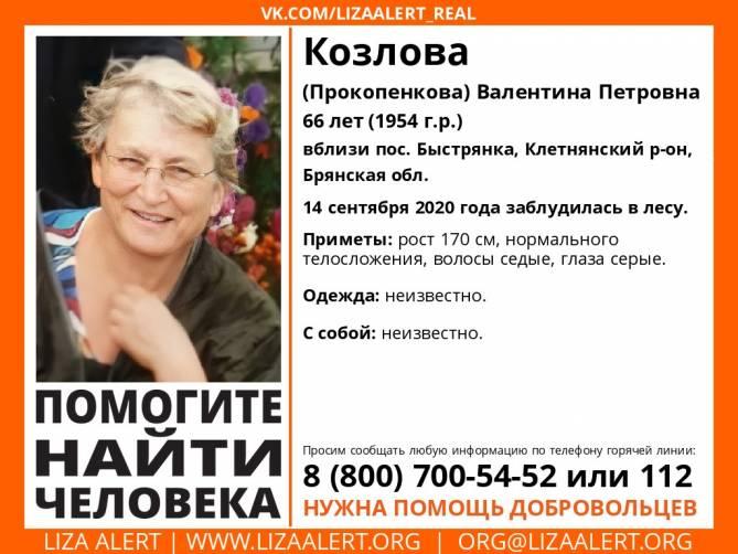 В Брянской области разыскивают 66-летнюю Валентину Козлову
