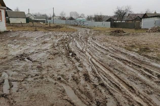 Жители Стародуба увязли в грязевом болоте в частном секторе