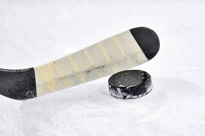 Брянские хоккеисты проиграли команде из Ярославля
