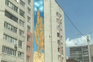 В Брянске стену многоэтажки украсил огромный мурал в виде пшеницы