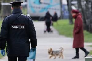 В Жуковке на Первомай составили 25 протоколов на нарушивших самоизоляцию