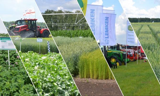 Россельхозбанк представил цифровую экосистему для фермеров на «Всероссийском дне поля»