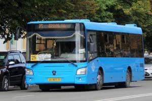 С начала года в Брянске в ДТП по вине водителей автобусов пострадало 7 человек