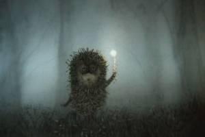 Брянская область в ночь на пятницу погрузится в туман