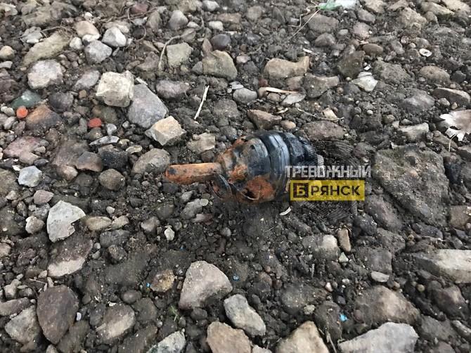 В Брянске обезвредили перепугавшую горожан гранату Ф-1