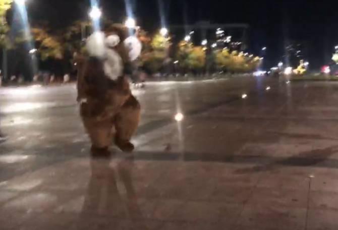 В Брянске сняли на видео танцы белки перед Курганом Бессмертия