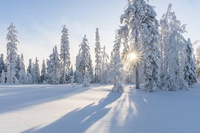 В Брянской области похолодает до -22