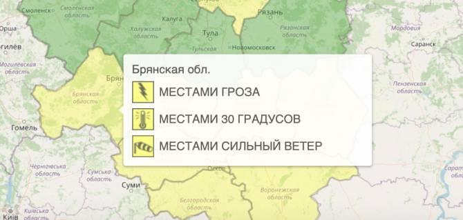 На Брянщине из-за грозы объявили жёлтый уровень погодной опасности