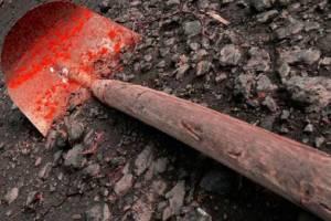 В Белых Берегах двое мужчин до смерти забили лопатой собутыльника