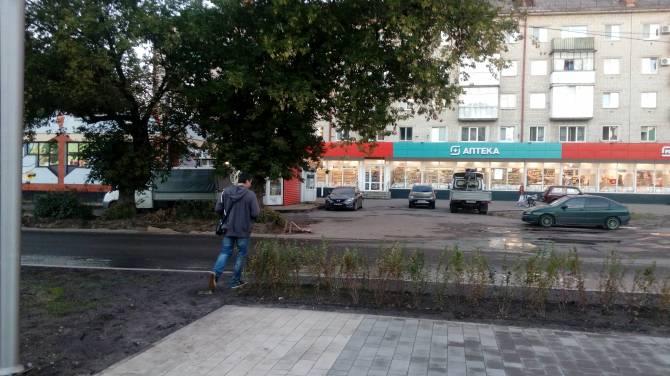 В Брянске заметили недостатки реконструкции сквера у Лития