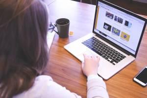 Только половина брянских предприятий имеет свой веб-сайт в Интернете