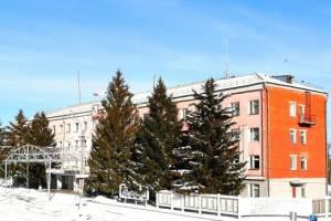 Глава Новозыбкова прокомментировал скандальную вырубку елей у мэрии