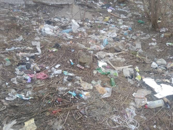 В Брянске детскую площадку завалило отходами