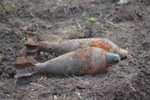 Под Севском обезвредили четыре мины