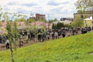 Сотрудники брянской мэрии посадили яблони в «Саду Победы»