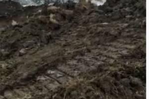 В Брянске ночью техника разворотила землю в пойме Десны