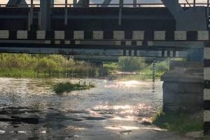 В брянском посёлке Ходаринка из-за паводка затопило дорогу