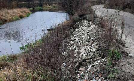 В Брянске берег реки Снежка превратился в свалку