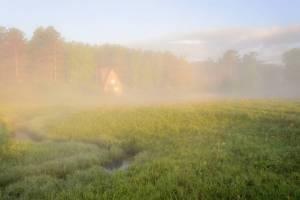Брянщину в субботу окутает туман
