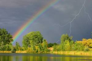 Брянцам в среду обещают дождь с грозой
