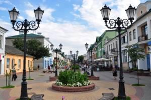Брянские чиновники отправились в неспокойную Беларусь