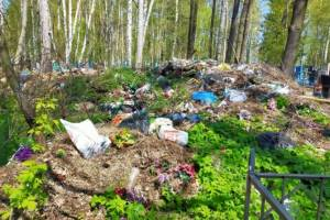 В Мглинском районе кладбища утонули в мусоре