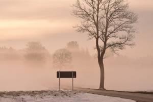 Мокрый снег, дождь, туман и гололед: что ждет Брянскую область 22 февраля