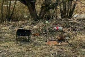 Жители Брянска после шашлыков устроили свалку в лесу