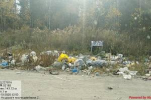 В Брянске дачники садового общества «Дормаш» освободили от мусора