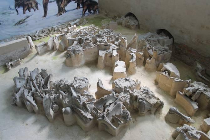 В Брянской области реконструируют уникальную стоянку эпохи палеолита