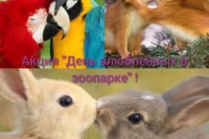 Брянский зоопарк подготовил подарок для влюбленных