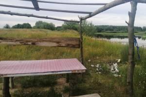 В Новозыбкове свиньи загадили место отдыха