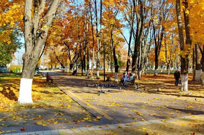 В брянском парке Железнодорожников сделают скейт-площадку