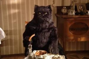 Почти половина брянцев верит в «беременный» стул и чёрную кошку