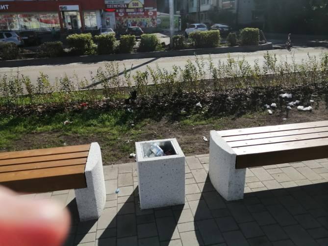 В Брянске «свиньи» загадили отремонтированный сквер у Лития