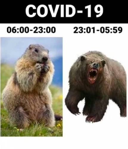Брянские бизнесмены высмеяли ограничения из-за COVID-19