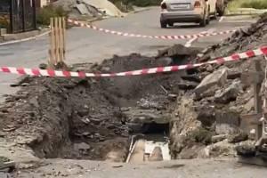 Центр Брянска завалило трупами крыс
