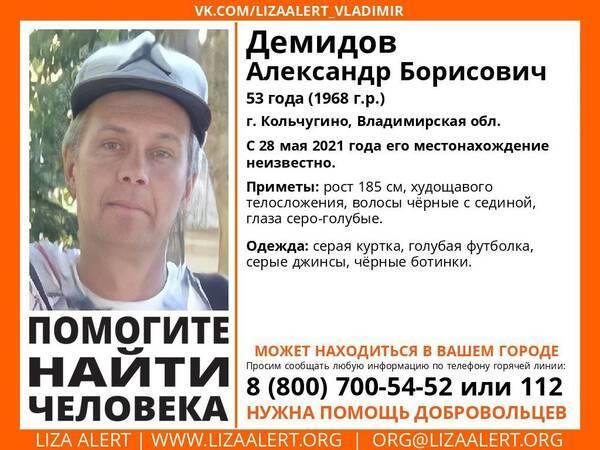 Брянцев просят помочь найти пропавшего мужчину из Владимирской области