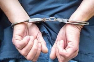 В Брянской области поймали 26 находящихся в розыске иностранцев