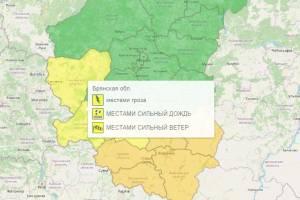В Брянске из-за грозы и ветра объявили желтый уровень опасности