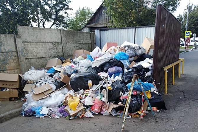 В Брянске решили судьбу свалки возле ТРЦ «Мельница»