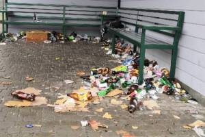 Брянцы пристыдили чиновников за свинарник на улицах
