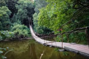 Популярному в Брянской области подвесному мосту срочно требуется ремонт