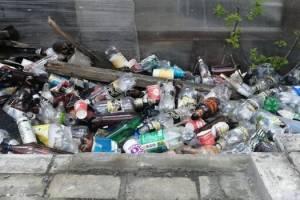 В Майском парке Брянска появилась мусорная свалка