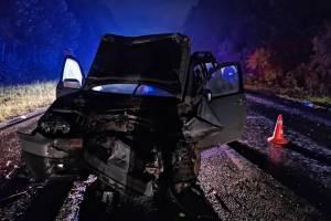 В аварии на трассе Брянск-Дятьково погибла 4-летняя девочка