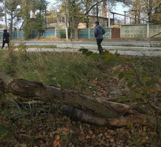В Брянске двое мужчин зверски избили парня во время поиска наркотиков