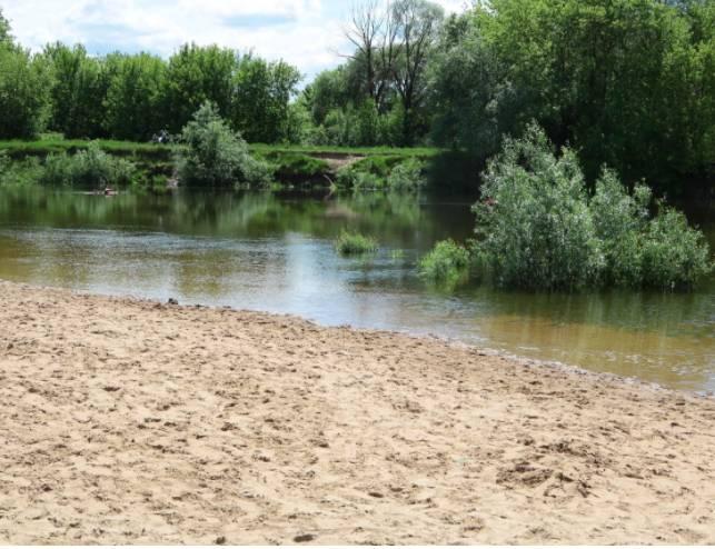 В Бежицком районе Брянска Центральный пляж благоустроят до конца лета