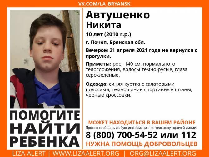 В Брянской области без вести пропал 10-летний Никита Автушенко
