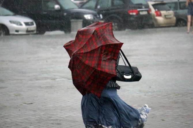 В Брянске на День города ждут ураганный ветер и падение деревьев