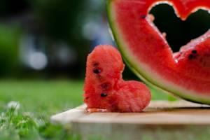 Брянцы не оценили призыв «Чистой планеты» умерить арбузные аппетиты
